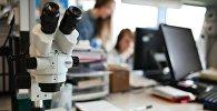 Лаборатория. Архивное фото