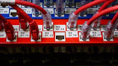 Сетевые кабели. Архивное фото