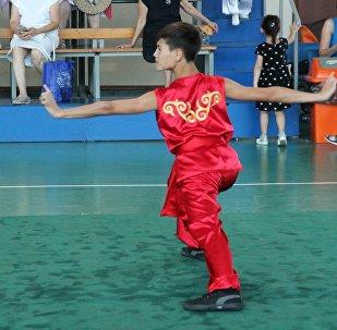 Ушуисты из Кыргызстана завоевали 20 медалей на международном открытом турнире в Алматы (Казахстан)
