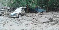 Катуу жааган жамгырдан улам Аравандын Кичи-Алай айылын сел каптады