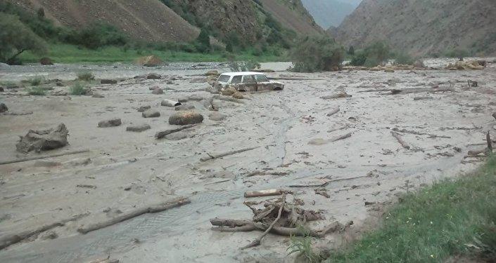 Сильные дожди привели к сходу селя, который затопил село Кичи-Алай в Араванском районе Ошской области