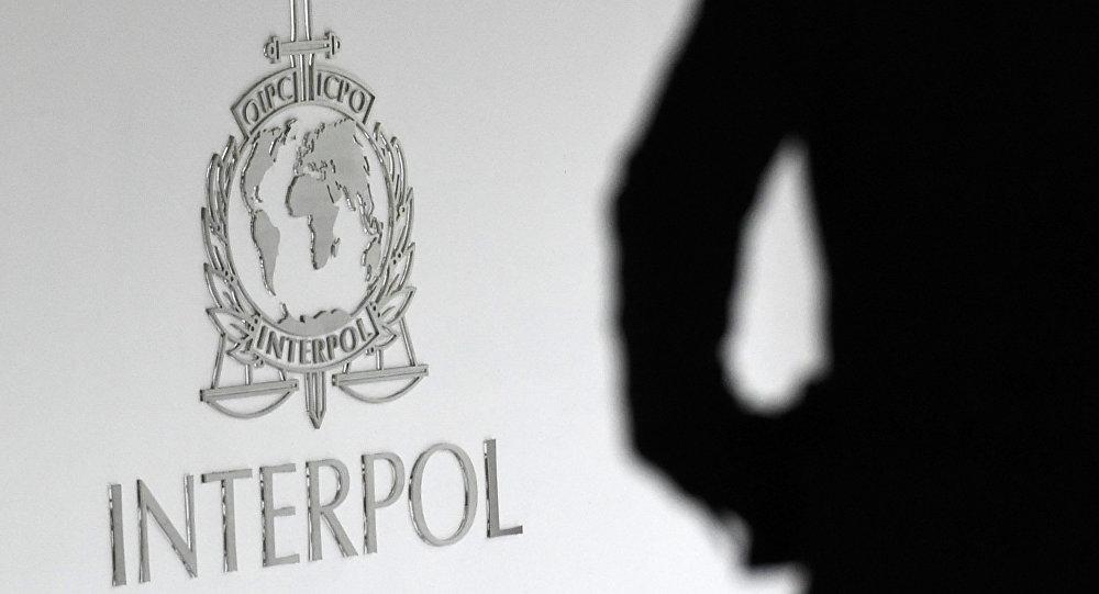 Логотип интерпола. Архивное фото