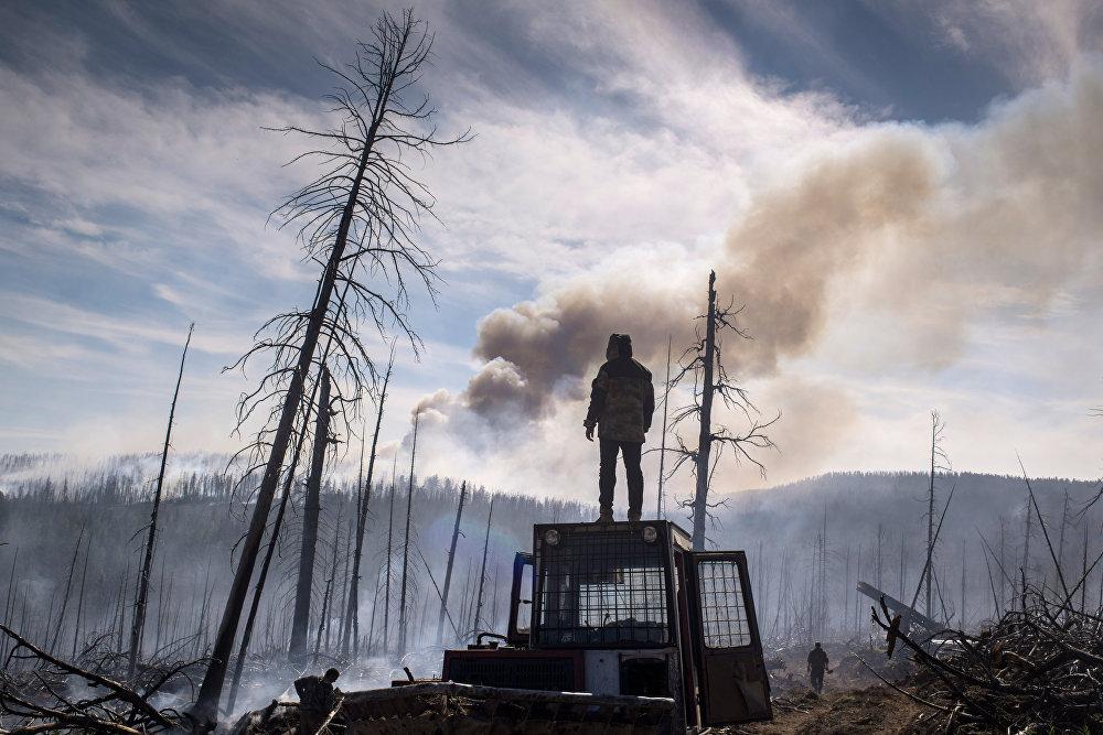 Последствия лесных пожаров в Бурятии