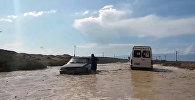 Вышла из берегов река на юге Иссык-Кульской области – видео очевидца