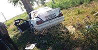 В Джети-Огузском районе Иссык-Кульской области водитель уснул за рулем и въехал в дерево