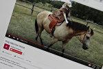 Лабрадор катается на лошади. Фото со страницы YouTube канала Kathryn Gregory