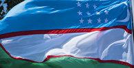 Флаг Узбекистана на международном форуме Алтайская цивилизация и родственные народы алтайской языковой семьи