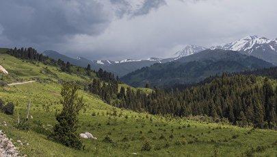 Природа Жыргалана в Тюпском районе Иссык-Кульской области. Архивное фото