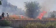В Бишкеке сгорело 2 гектара сухотравья — кадры пожара