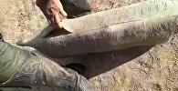 Как этим играть в кок-бору? — резиновый муляж козла порвался за 10 минут