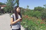 Кыргызстандык кыз Нуриза Көчкөмбай кызынын архивдик сүрөтү