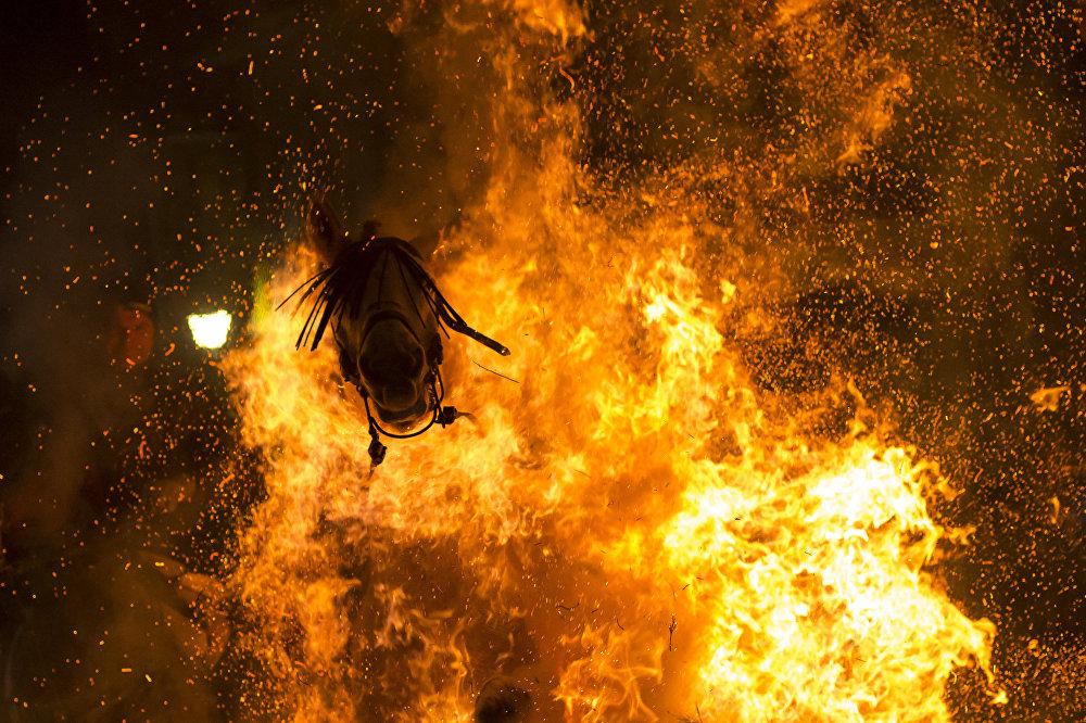 Испаниялык Виктор Бланко Менин планетам. Жалгыз сүрөт номинациясында Очищающий огонь эмгеги менен үчүнчү орунду ээледи