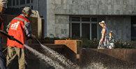 Работники муниципального предприятия Тазалык моют памятник писателя Чингизу Айтматову в Бишкеке