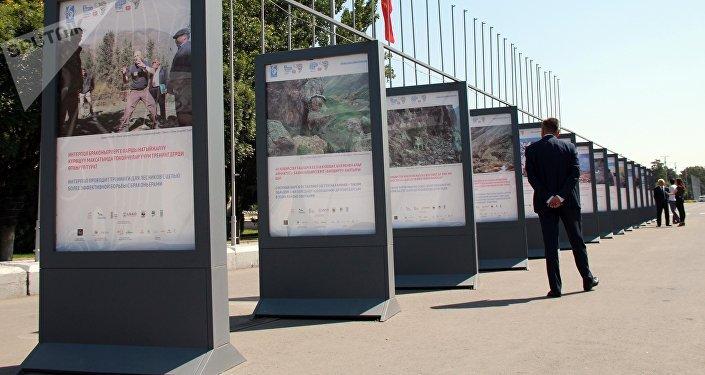 Фотовыставка, посвященная снежным барсам на площади Ала-Тоо Бишкека