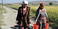 Женщины носят ведро с водой в одном из сел Баткенской области. Архивное фото