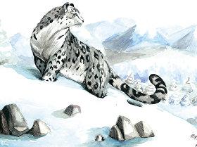 Рисунки для конкурса Снежный барс — владыка горных вершин