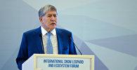 Алмазбек Атамбаев ак илбирсти сактоо боюнча эл аралык форумда