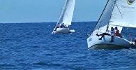 Право руля! Яхты на Иссык-Куле устроили гонки — яркие кадры регаты