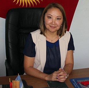 Москва мамлекеттик лингвистикалык университетиндеги Кыргыз тили жана маданияты борборунун жетекчиси Жеңишгүл Хулхачиеванын архивдик сүрөтү