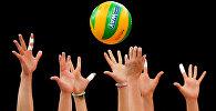 Волейболисты с мячом. Архивное фото