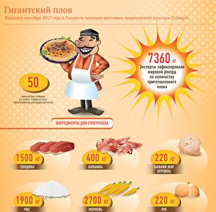 Сколько продуктов ушло на самый большой плов в мире — инфографика