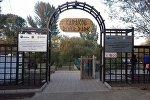Открытие зона отдыха Каракол Ривер Парк в Караколе