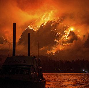 Лесные пожары в Орегоне. США