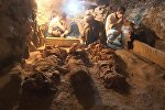 Что нашли археологи в гробнице возрастом 3500 лет — кадры с Египта