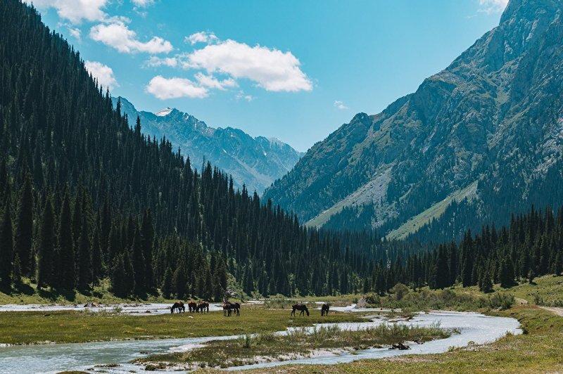 Природа Кыргызстана снятая видеомейкером Питом Рожвунгсурия из Таиланда