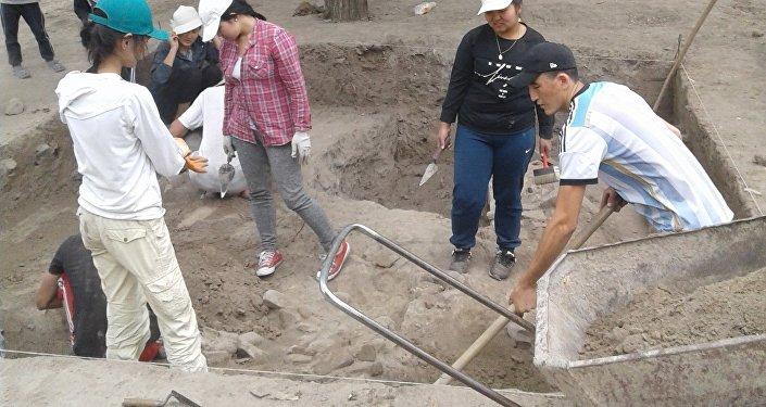 Исследование началось, когда археологи нашли организации, поддержавшие их начинание