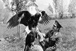 Директор Иссык-Кульского заповедника занимается с ловчей птицей