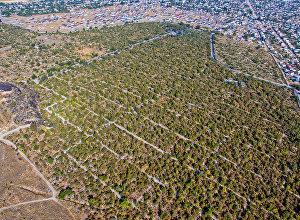 Вид на юго-Западное кладбище Бишкека. Архивное фото