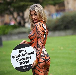 Акция протеста против использования животных в цирках Лондона