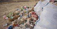 Мешки мусора вдоль дороги. Архивное фото