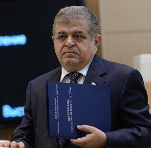 Архивное фото первого заместителя председателя Комитета Совета Федерации по международным делам Владимира Джабарова