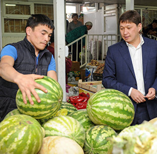 Рабочий визит премьер-министра Сапара Исакова в Нарын