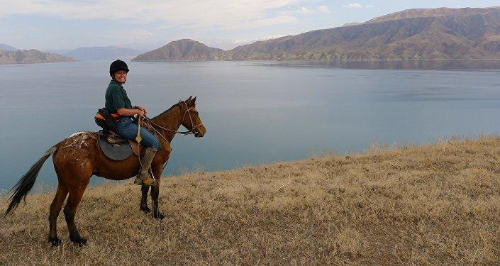 Разведение пятнистых лошадей породы Аппалуза