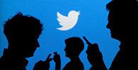 Twitter логотип фонунда телефондорду кармаган адамдар. Архив