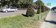 Ограждения со штыками на проспекте Чуй в районе Востока-5. Архивное фото