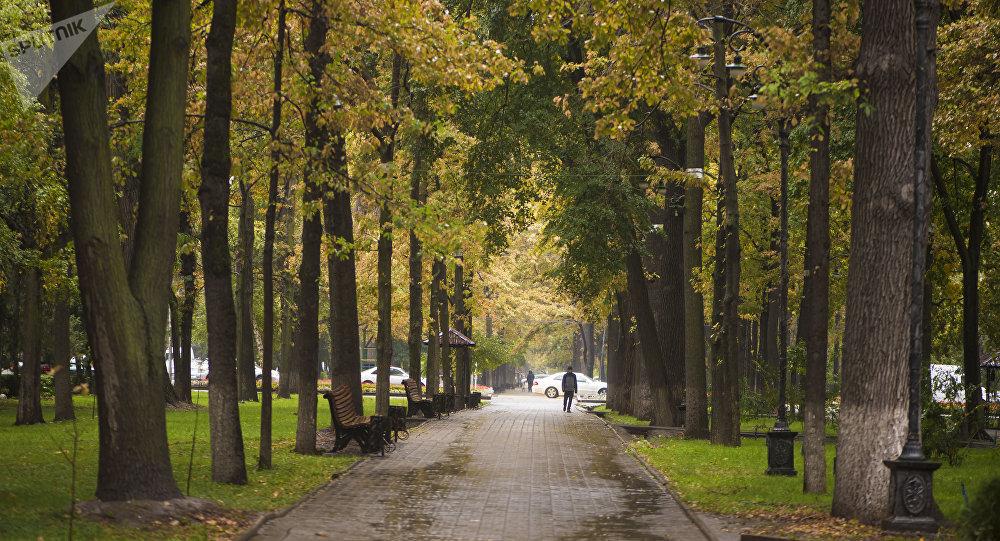 Бишкектин Эркиндик бульвары. Архивдик сүрөт