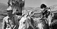 Знаменитая Наталья Аринбасарова — архивный кадр из фильма Первый учитель