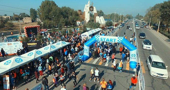 Жарышка түшкөн миңден ашуун күлүк. Бишкектеги иш-чаранын видеосу