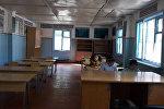 Жалал-Абаддын Сузак районундагы айрым мектептерде жаңгак теримге байланыштуу окуучулардын билим алуусу үзгүлтүккө учурады