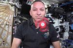 Что происходит со спиннером в космосе — видео от астронавтов