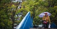 Женщина с зонтом идет по улице. Архивное фото