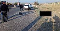 Сотрудники МВД на месте наезда на пешехода в селе Баш-Булак