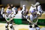 Битва роботов в рамках XIX Всемирного фестиваля молодежи и студентов в Сочи.
