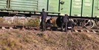 Бишкекте эркек киши поезддин алдында калып каза болду.