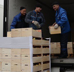 Рабочие грузят товар в фуру на овощебазе. Архивное фото