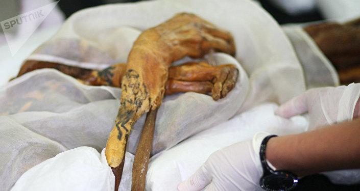 Транспортировка мумии. Архивное фото